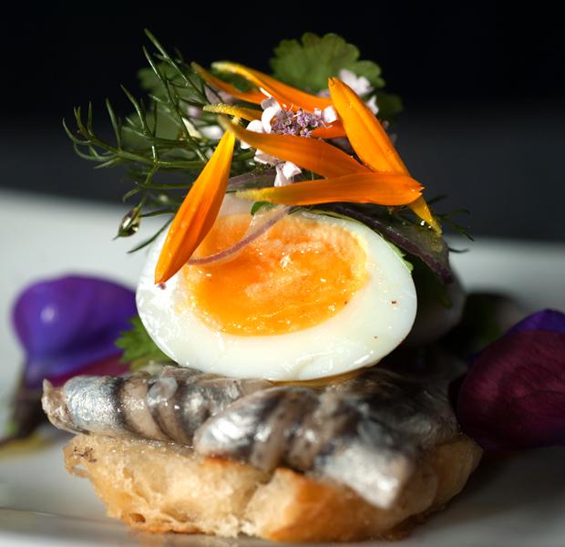 egg-dish